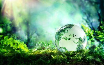 VDI: Recyclingfähigkeit von Kunststoff als neuer Standard gefordert