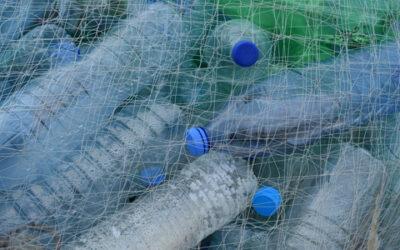 Nachhaltigkeit: Neuer VDI-Statusreport zur Kreislaufwirtschaft von Kunststoffen