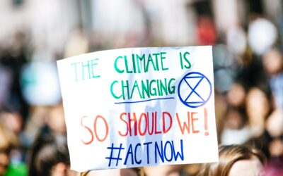 Klimaziele: Digitalisierung hat enormen Effekt
