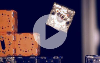 Modulare Robotik: MIT entwickelt schwarmintelligente Roboter