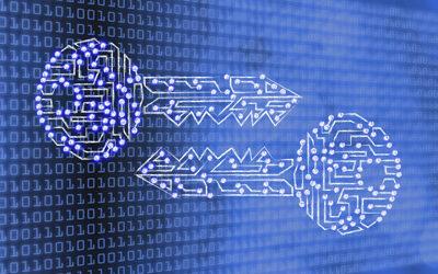Cybersecurity: Bitkom veröffentlicht Grundsatzerklärung zur verschlüsselten Kommunikation